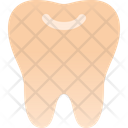 Tooth Dentist Teeth Icon
