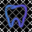 Tooth Dental Dentist Icon