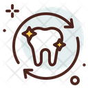 Tooth Dentistry Dental Care Icon