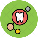 Tooth Dental Human Icon