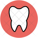 Tooth Human Body Icon
