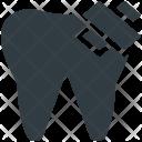 Tooth Molar Dental Icon