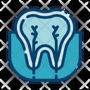 Tooth Nerve Icon
