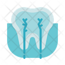 Tooth Nerve Icon