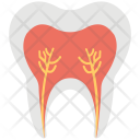 Tooth Roots Pulp Icon