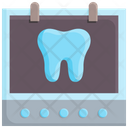 Tooth x-ray Icon