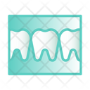 Tooth X Ray Icon