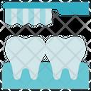 Dentist Toothbrush Teeth Icon