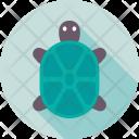 Tortoise Turtle Terrapin Icon