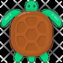 Angonoka Tortoise Animal Icon