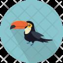 Toucan Bird Chordata Icon