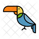 Toucan Bird Sea Bird Icon