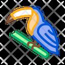 Toucan Bird Wood Icon