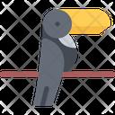 Toucan Bird Parrot Icon