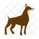 Toy Manchester Terrier Dog Icon