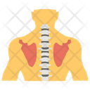 Trachea Upper Respiratory Tract Gland Hormone Icon