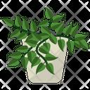 Tradescantia Potted Plant Icon