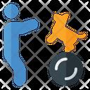 Training Dog Walking On Ball Dog Training Icon