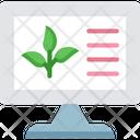 Training Plant Details Farming Training Icon