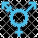 Transgender Icon