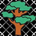 Large Tree Nature Icon