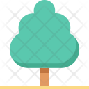 Tree Shrub Greenery Icon