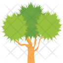 Tree Shrub Nature Icon