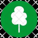 Tree Plant Oak Icon