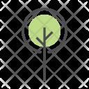Tree Greenery Plant Icon