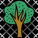 Tree Oak Shrub Icon