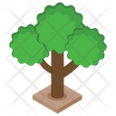 Tree Plant Forest Icon