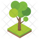Tree Fruit Tree Nature Icon