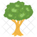 Apple Tree Fruit Tree Tree Icon