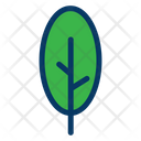Botanical Yard Tree Icon