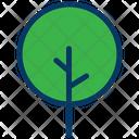 Botanical Yard Tree Icon