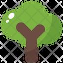 Tree Spring Nature Icon