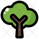 Tree Spring Nature Icon