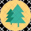 Tree Christmas Nature Icon