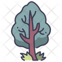 Tree Garden Nature Icon