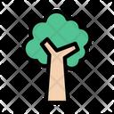 Tree Nature Autumn Icon