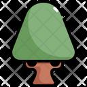 Tree Nature Botanical Icon