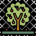 Tree Fruit Nature Icon
