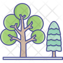 Cypress Dotted Leaf Generic Plants Icon