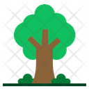 Tree Autumn Fall Icon