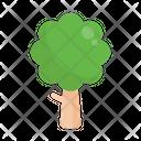 Tree Nature Green Icon