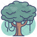 Tree Nature Forrest Icon