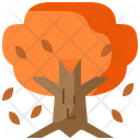 Autumn Season Autumn Tree Icon