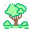 Jungle Forest Tree Icon
