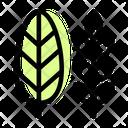 Leaf Paddy Icon