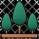 Tree Nature Trees Icon
